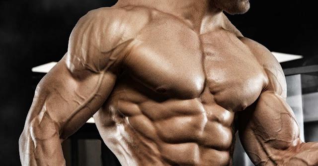 مصادر الفيتامينات التي يحتاجها الجسم للضخامة العضلية .