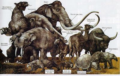 Fósiles de carnivoros