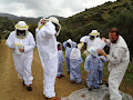 Vavla, Bee Heaven - Educational Tours for children by Ecophysis