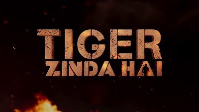 Tiger Zinda Hai Movie Poster Image