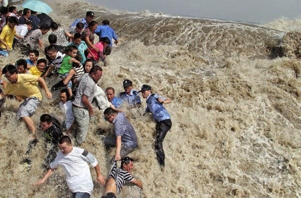Cunamij Japan 2011