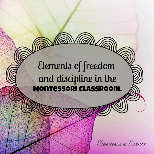 Elements of freedom and discipline in the Montessori classroom.