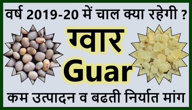 ग्वार व ग्वार गम के भावों की का भविष्य नए वित्त वर्ष 2019-2020 क्या रहेगा ?  Guar, guar gum, guar price, guar gum price, guar demand, guar gum demand, guar seed production, guar seed stock, guar seed consumption, guar gum cultivation, guar gum cultivation in india, Guar gum farming, guar gum export from india , guar seed export, guar gum export, guar gum farming, guar gum cultivation consultancy, today guar price, today guar gum price, ग्वार, ग्वार गम, ग्वार मांग, ग्वार गम निर्यात 2018-2019, ग्वार गम निर्यात -2019, ग्वार उत्पादन, ग्वार कीमत, ग्वार गम मांग, Guar Gum, Guar seed, guar , guar gum, guar gum export from india, guar gum export to USA, guar demand USA, guar future price, guar future demand, guar production 2019, guar gum demand 2019