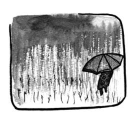 Хокку дождь
