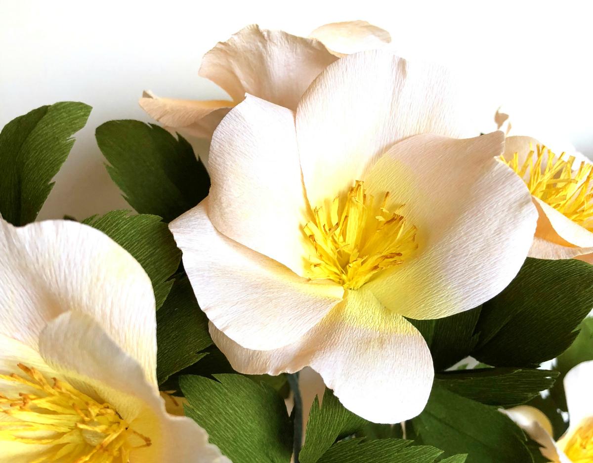 Michelle Zerull Wild Roses Paper Flowers