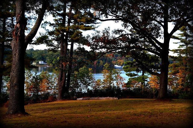 Maudsley State Park, Newburyport, Massachusetts, open space