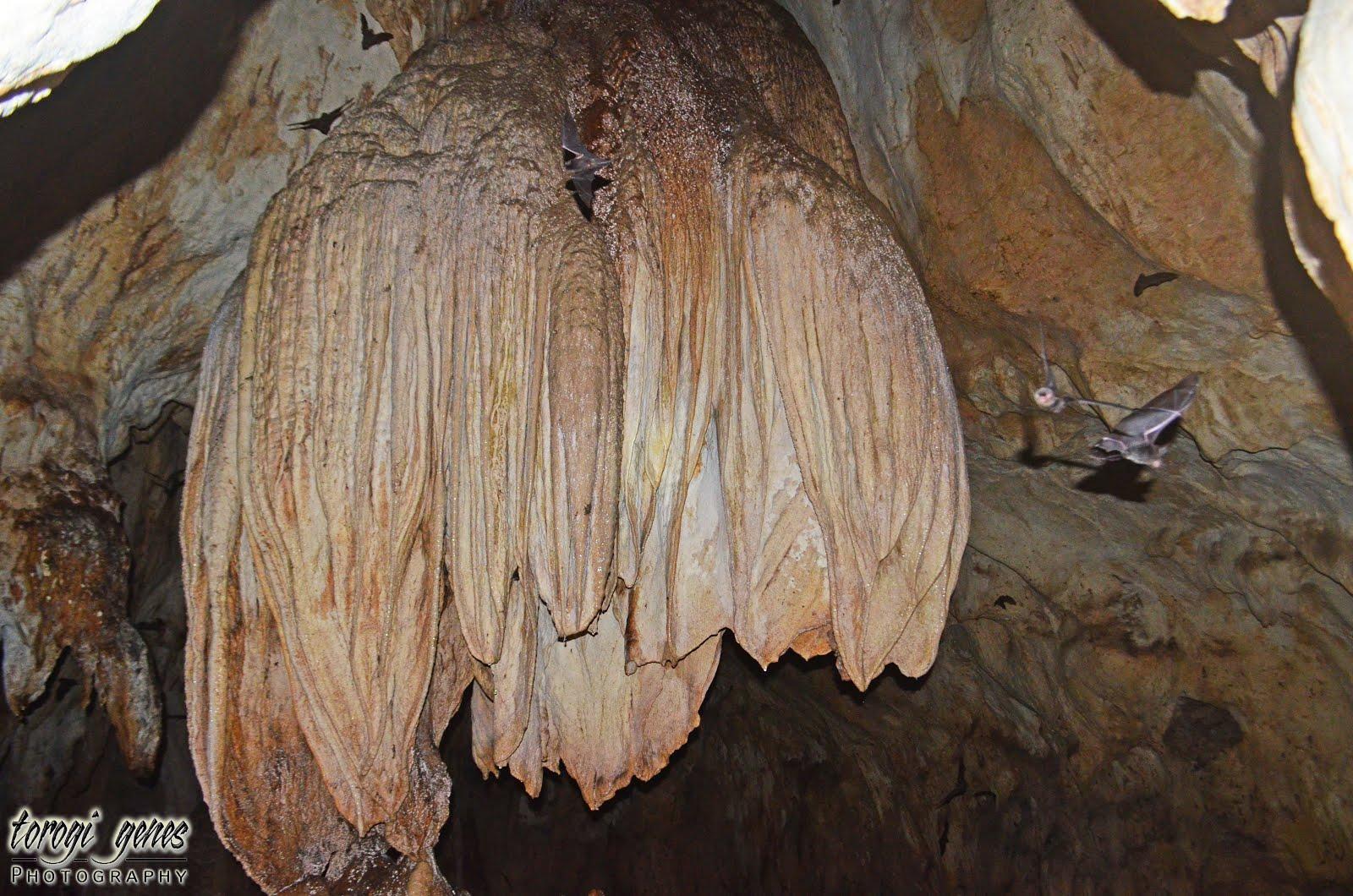 Lone Prowler Sibud Sibud Cave