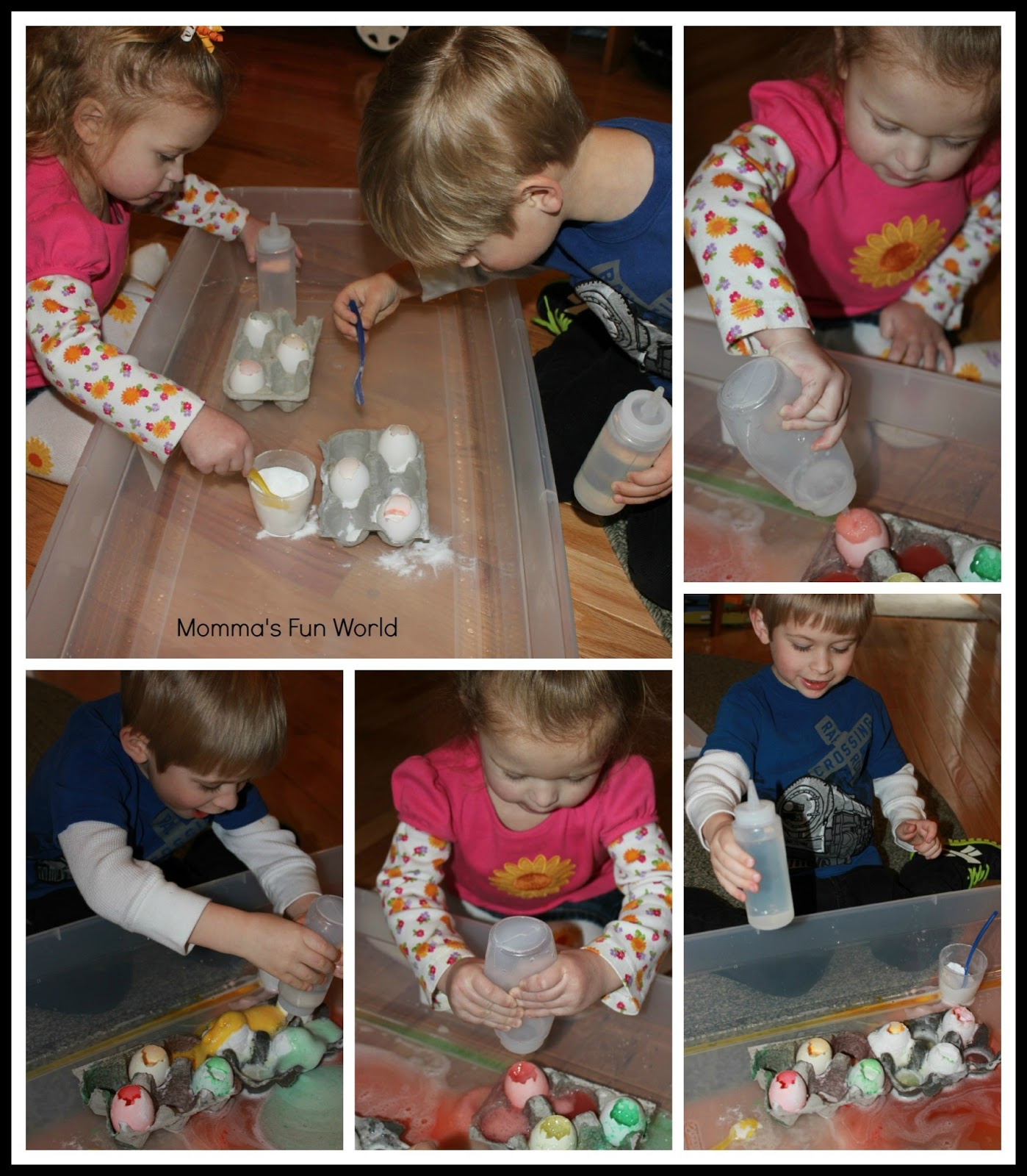 Momma S Fun World Volcano Egg Science