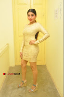 Actress Pooja Roshan Stills in Golden Short Dress at Box Movie Audio Launch  0002.JPG