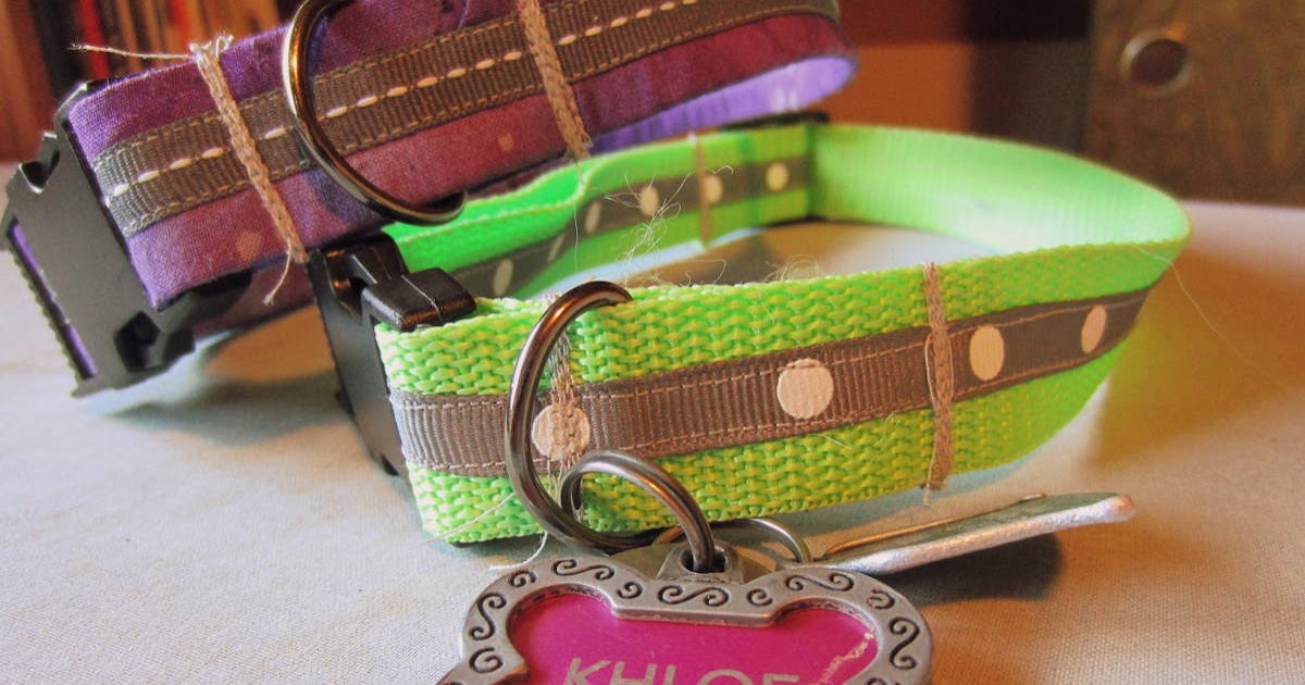 Amazon Dog Collars And Leashes