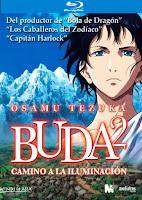 Buda_camino_a_la_iluminacion