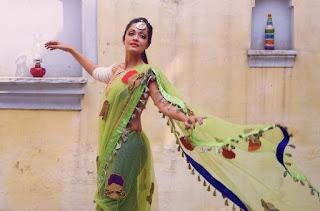 Actress Sheena Chohan sizzling pics 014.jpg
