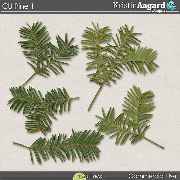 http://the-lilypad.com/store/cu-pine-1.html