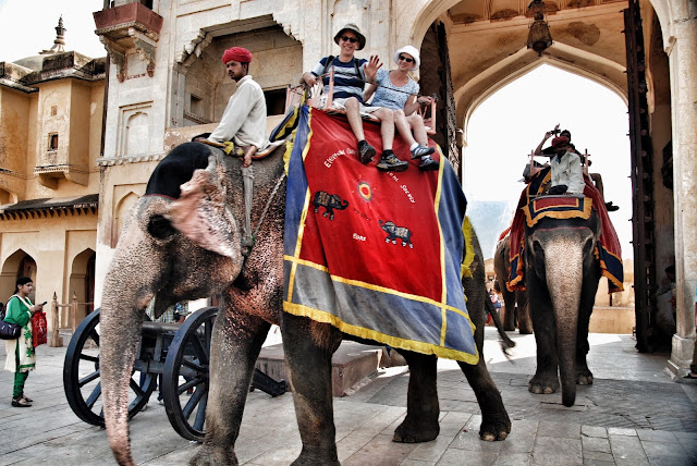 jaipur amber fort elefants