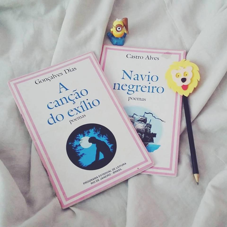 QUE FIM DEU A MARATONA LITERÁRIA DE CARNAVAL.