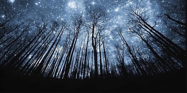 lukisan pemandangan malam hari