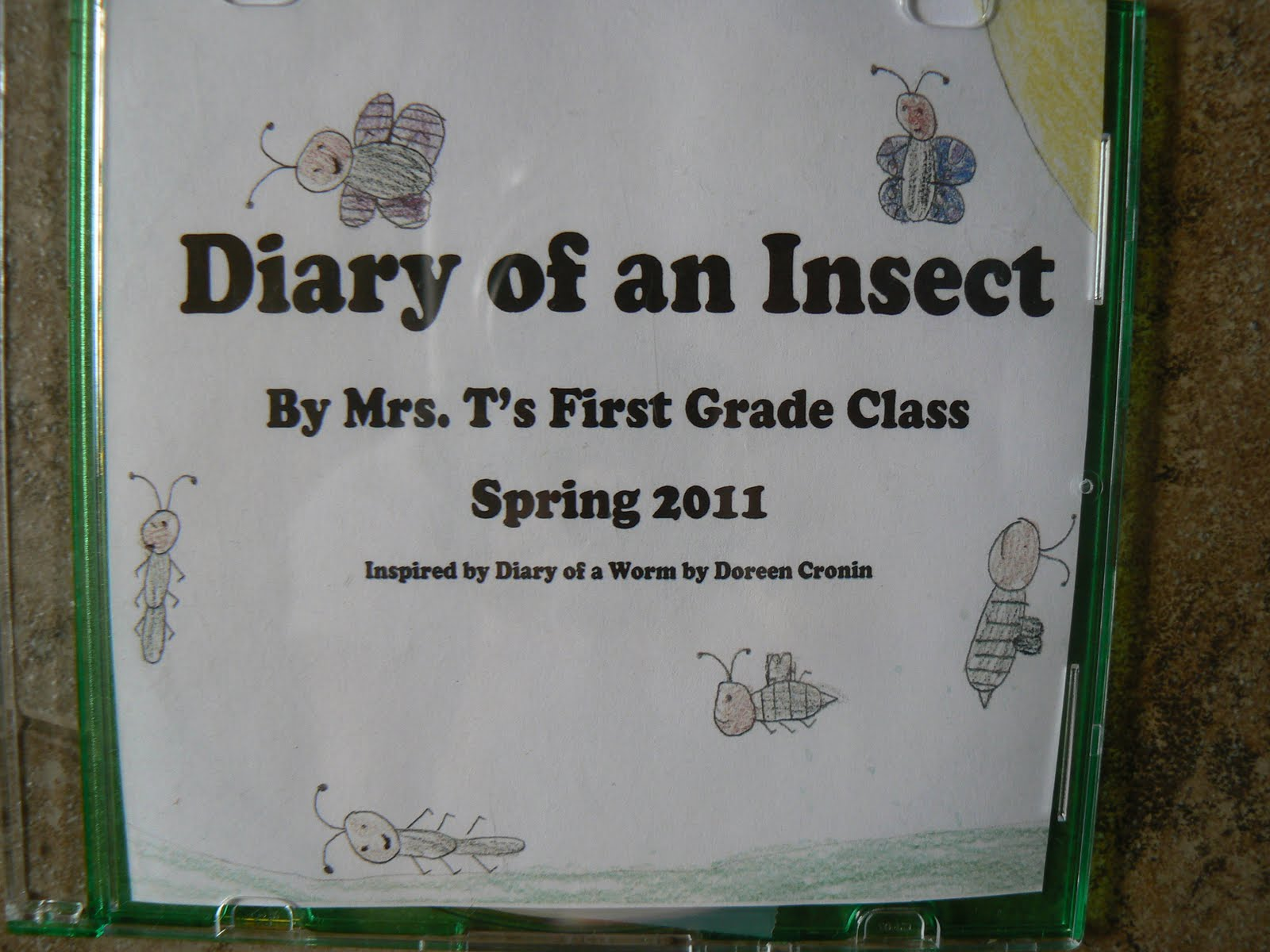 Mrs T S First Grade Class Diary Of A Worm