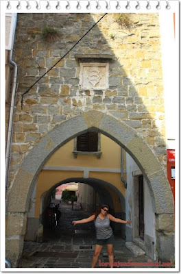 Dolfin Gate Piran