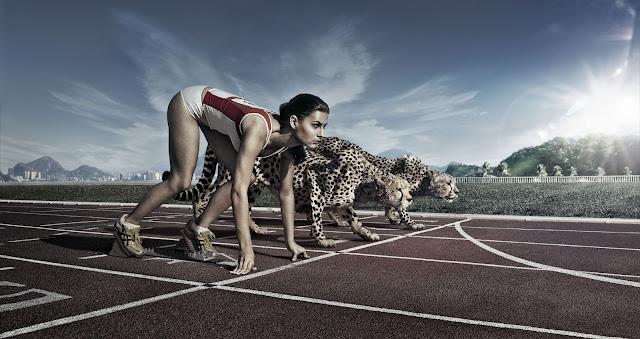 sprinting vs. cheetah