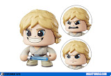 Luke Skywalker Star Wars Mighty Muggs Wave 1