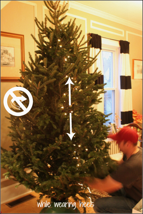 And Of Course These Tips Were Inspired Because We Bought Our Christmas Tree This Weekend