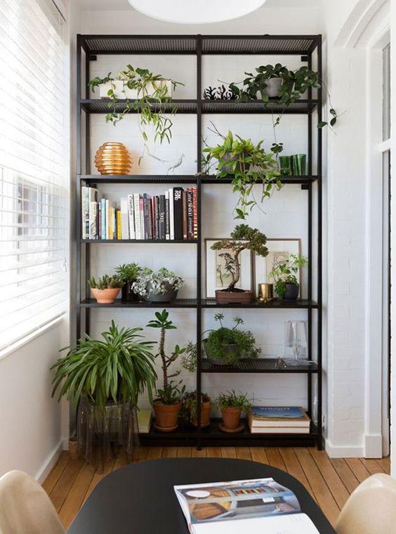 Cantinho verde ideias para ter plantas dentro de casa - Estantes para plantas ...