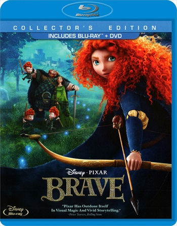Brave 2012 Dual Audio Hindi 480p BluRay 300mb