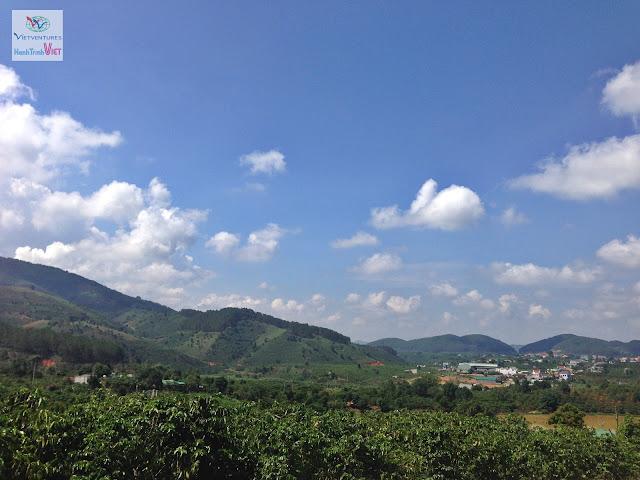 Tham quan trang trại Cà Phê ở Làng Tà Nùng, Đà Lạt