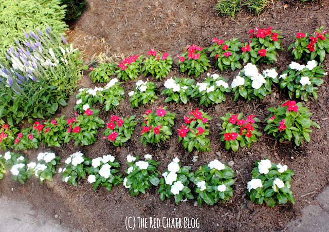 4th of July American flag flower planting at The Red Chair Blog
