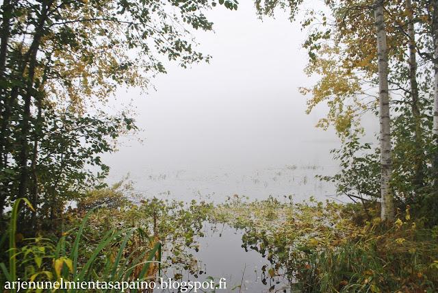 Kuopio, luontokuvaus, sumu, sää, syksy, syyskuu, päämäärä, tavoitteet