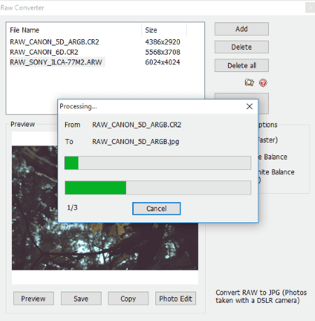 can you convert jpeg to raw