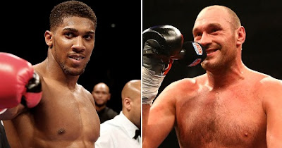 Tyson Fury Accepts Anthony Joshua's Challenge to Fight Him After Victory Over Klitschko