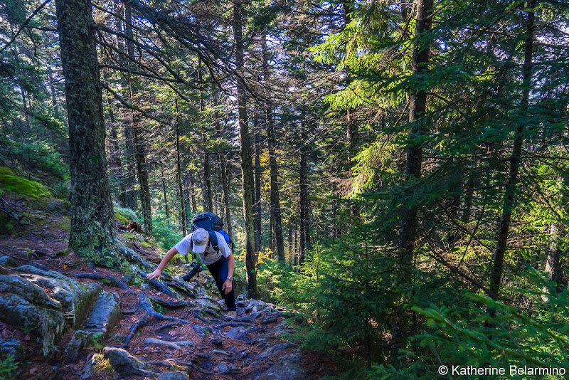 Borestone Mountain Summit Trail Maine Hiking Moosehead Pinnacle Pursuit