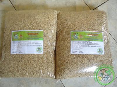Benih padi TRISAKTI 60 - 75 HST panen siap di order