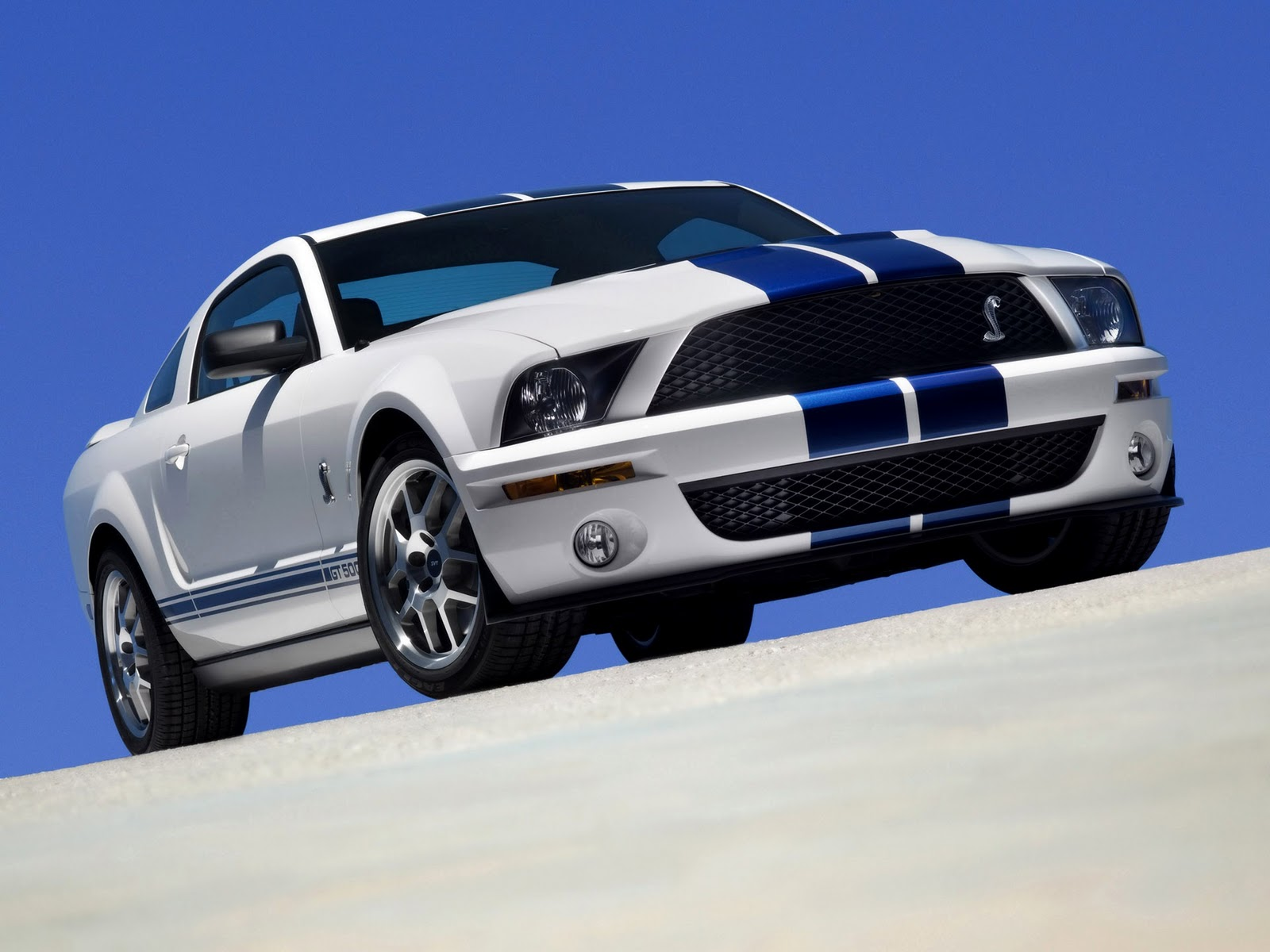 World Car Wallpapers 2012 Shelby Gt500 HD Wallpapers Download free images and photos [musssic.tk]