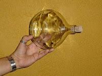 garrafa-de-vinho-na-mão-do-autor-blog-o-veleiro-na-garrafa