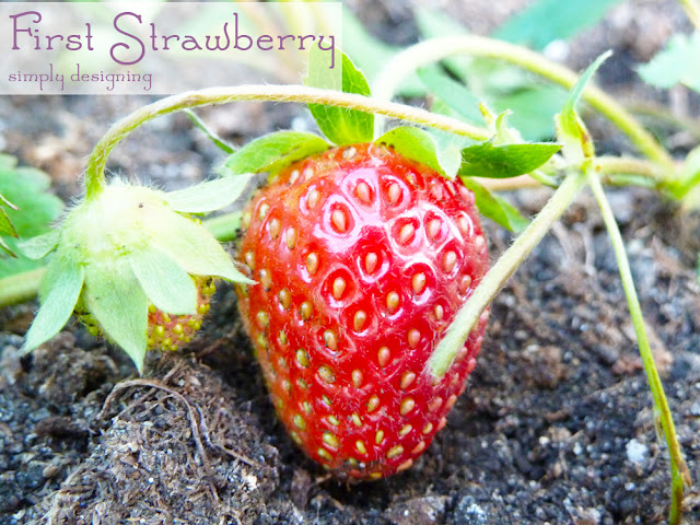 Strawberries ~ #garden #plant #website #HGTVGardens #spon