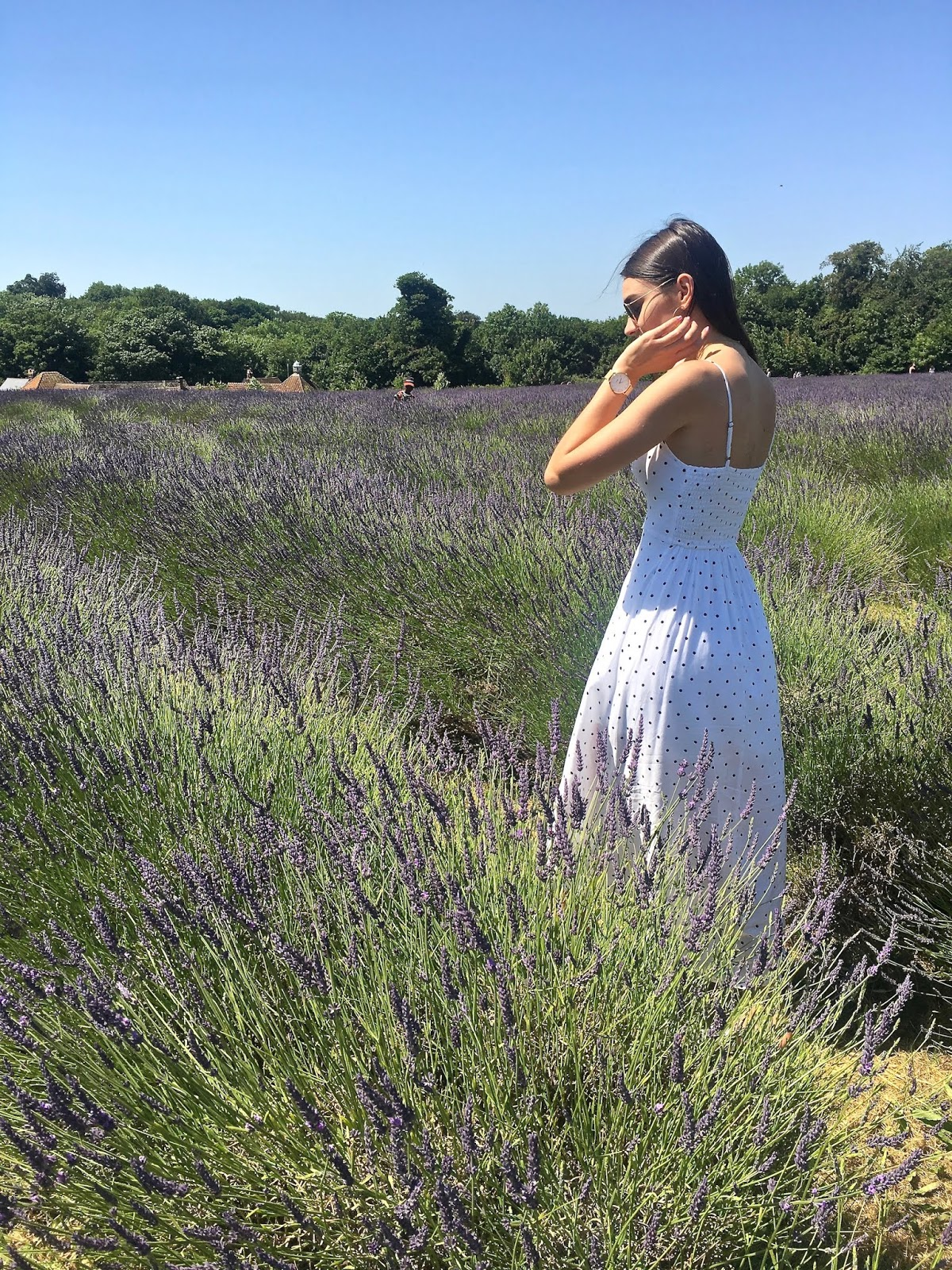 peexo summer fashon lavender fields