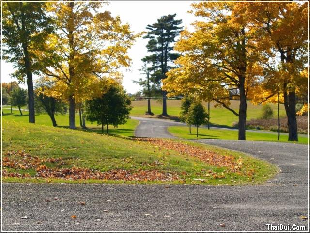 công viên mùa thu đẹp