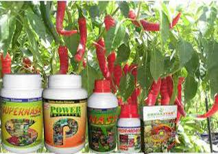 Harga dan Cara Penggunaan Pupuk POC Nasa, Hormonik, Viterna untuk Cabe