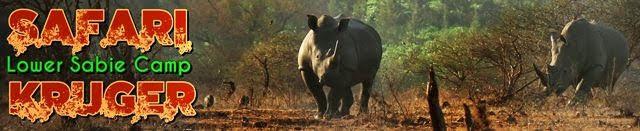 Safari-por-libre-Kruger-Lower-Sabie