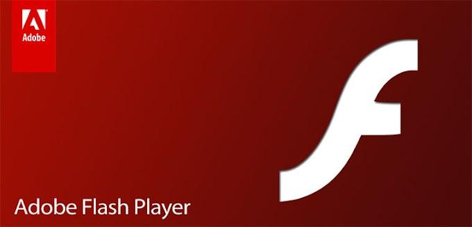 Cài đặt Adobe Flash Player trên Kali Linux