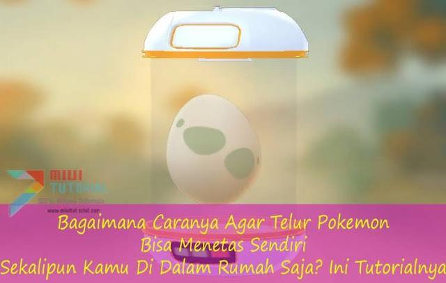 Bagaimana Caranya Agar Telur Pokemon Bisa Menetas Sendiri Sekalipun Kamu Di Dalam Rumah Saja? Ini Tutorialnya