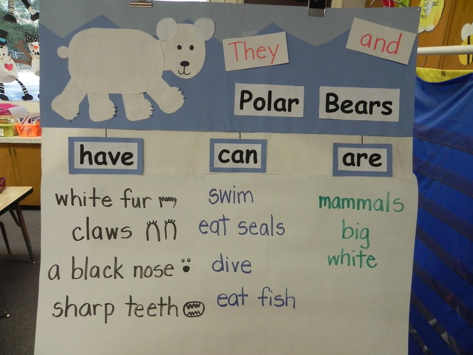 Mrs Vento S Kindergarten Polar Bears And More Tlc