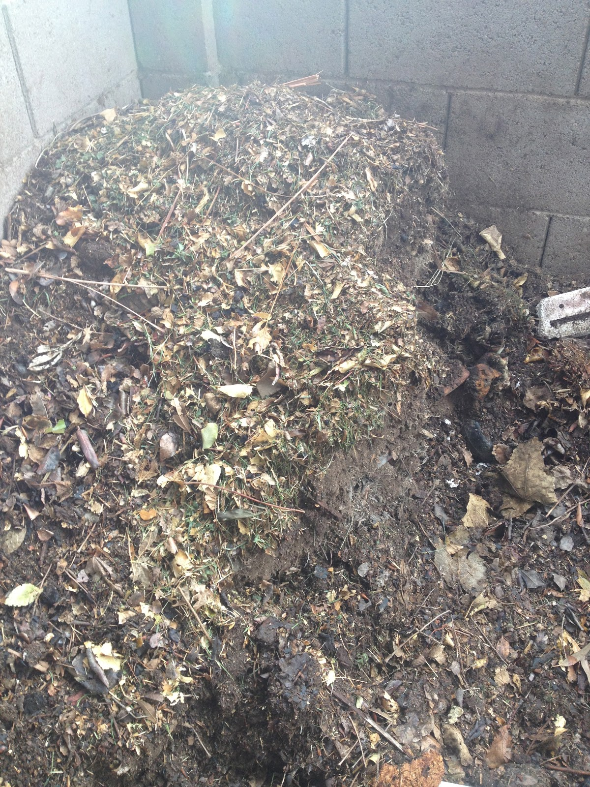 How Rake Leaves Out Mulch