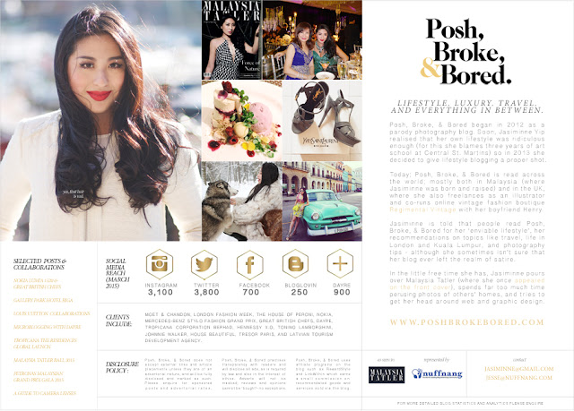 an example of a media kit of posh broke and bored blogging tip