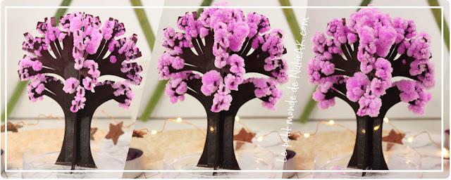 Magic Sakura : floraison de l'arbre miniature façon cerisier Sakura