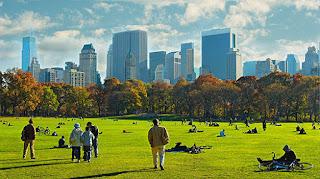 Nicholas Welsch Preciado - NYC Summertime