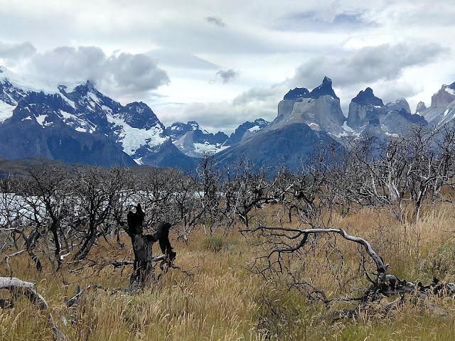 Mirador del Cóndor, Torres del Paine