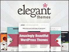 http://www.elegantthemes.com/affiliates/idevaffiliate.php?id=15386&url=22526